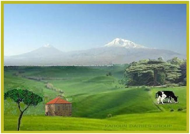 KAROUN DAIRIES GROUP